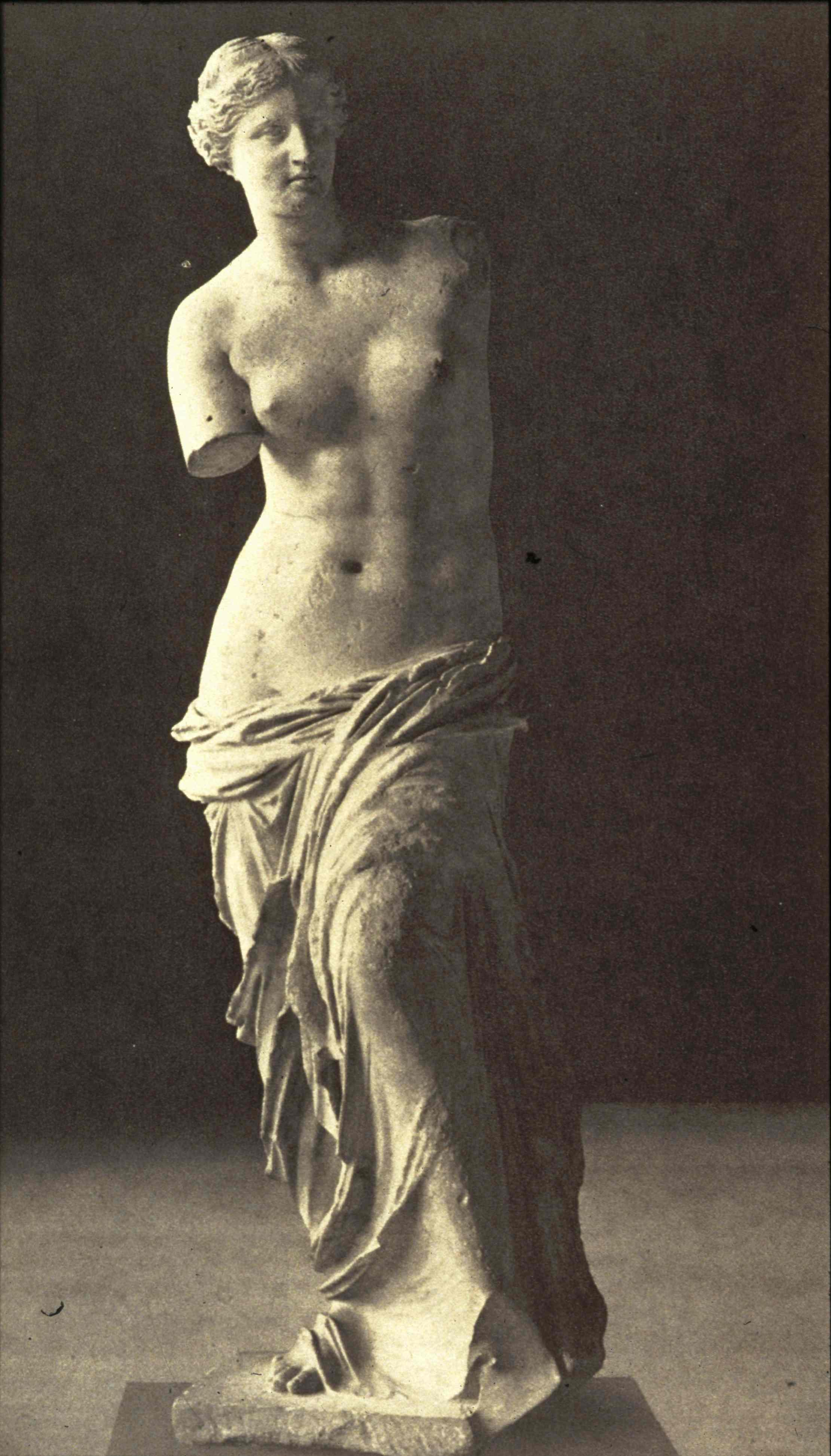 greek ideal human body